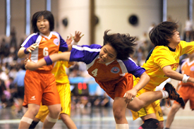 ハンドボール部 関東大会