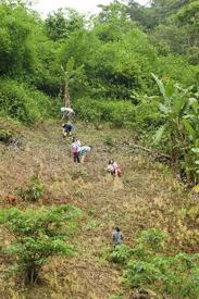 急斜面を駆け上がる生徒たち